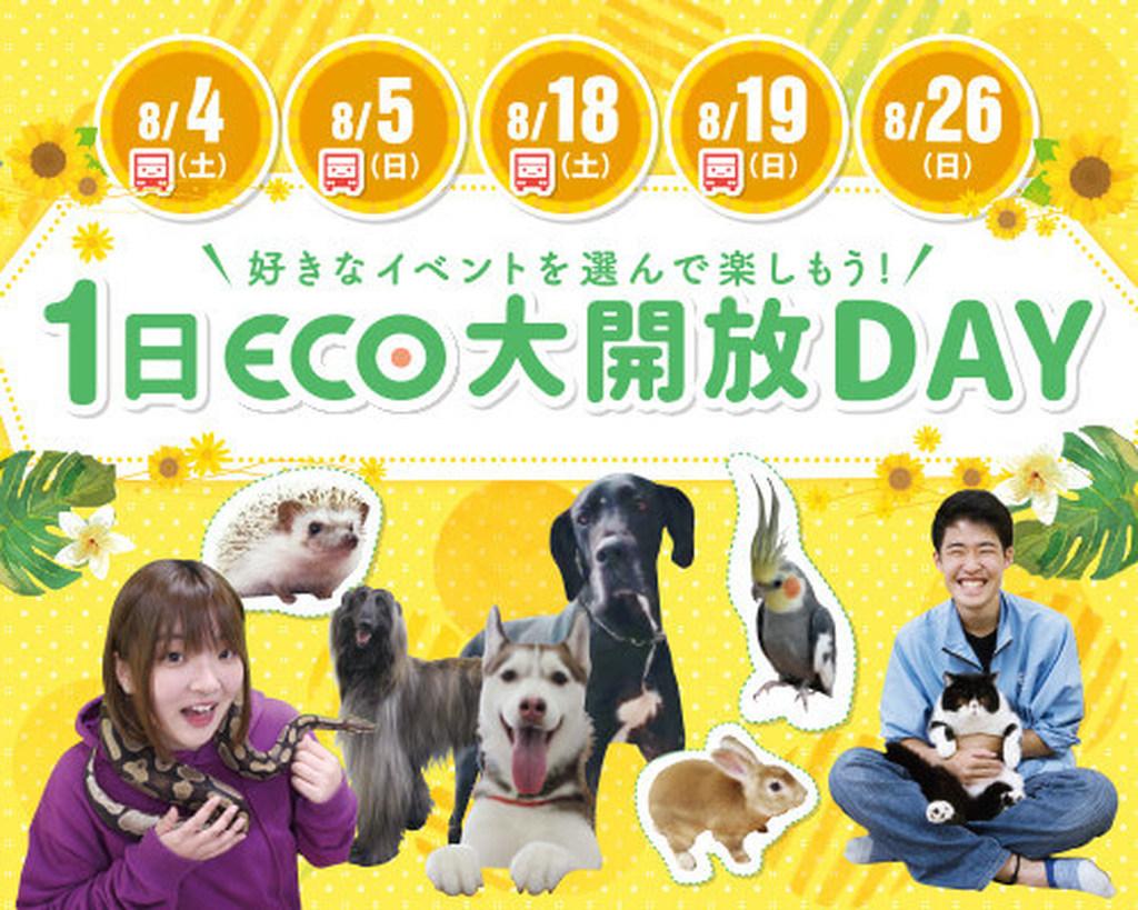 1日ECO学校大開放DAYS!